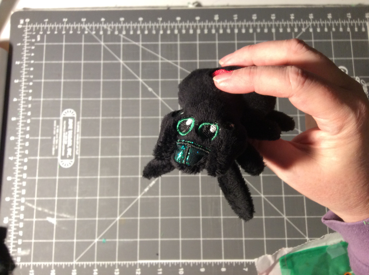 Plush Jumping Spider scale