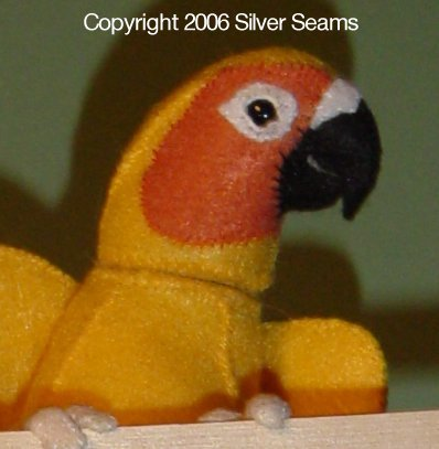 Sun Conure 2006
