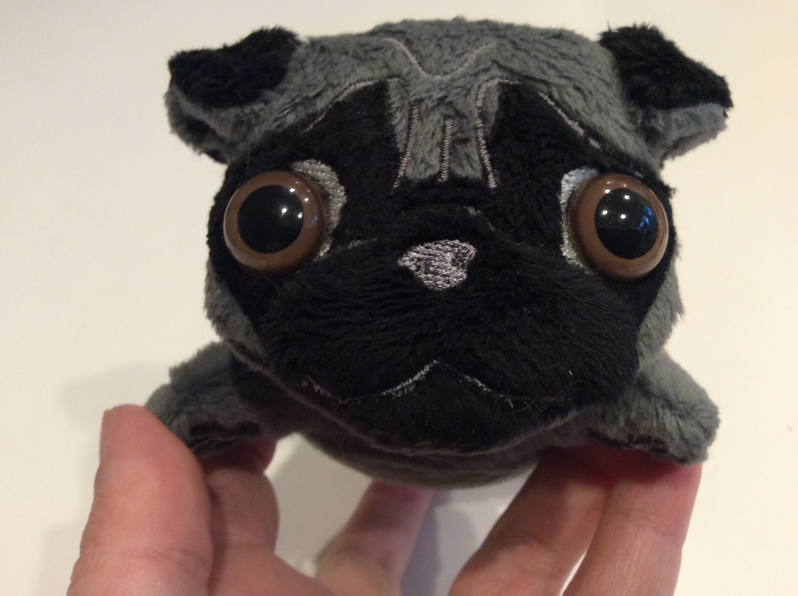 Closeup of a plush pug in silver with black mask.
